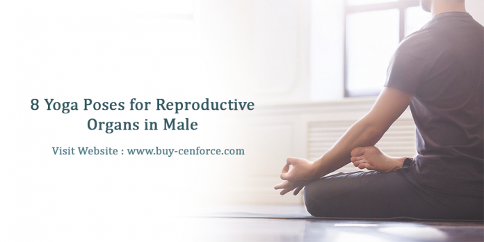 8 yoga poses for reproductive organs in male